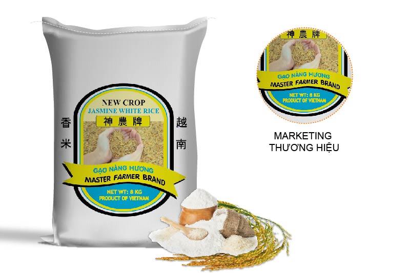 Bao bì gạo thiết kế đẹp góp phần tăng khả năng nhận diện thương hiệu Việt trên thị trường quốc tế - Sản xuất bao bì gạo cao cấp