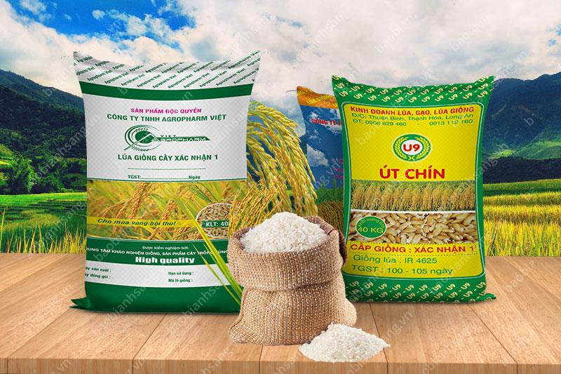 Doanh nghiệp tin dùng bao PP để đựng lúa giống - công ty sản xuất bao bì nhựa pp