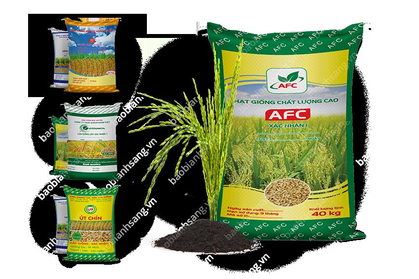 Bao bì lúa giống do Bao Bì Ánh Sáng sản xuất đảm bảo chất lượng