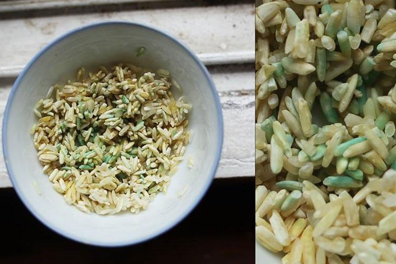 bảo quản lúa gạo, bao bì gạo xuất khẩu