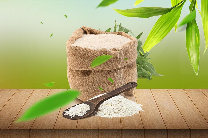 gạo là hạt ngọc trời
