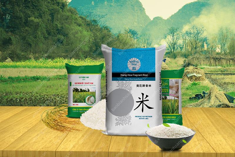 Thiết kế bao bì gạo đẹp thu hút khách hàng - thiết kế bao bì gạo