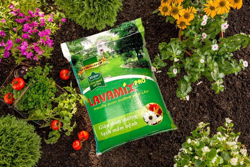 Bao bì đựng đất sạch đẹp, bắt mắt giúp doanh nghiệp thu hút khách hàng - bao bì đựng đất sạch