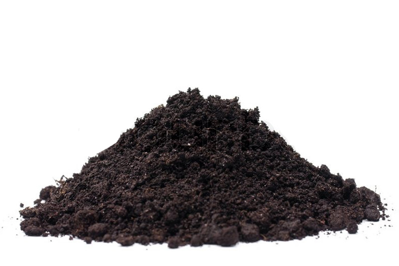 """Đất sạch là sản phẩm đang tạo nên những """"cơn sốt"""" trên thị trường - mẫu bao bì đất sạch đẹp"""