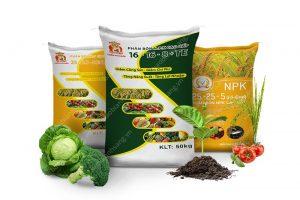 Bao bì công ty Thiên Phú Điền